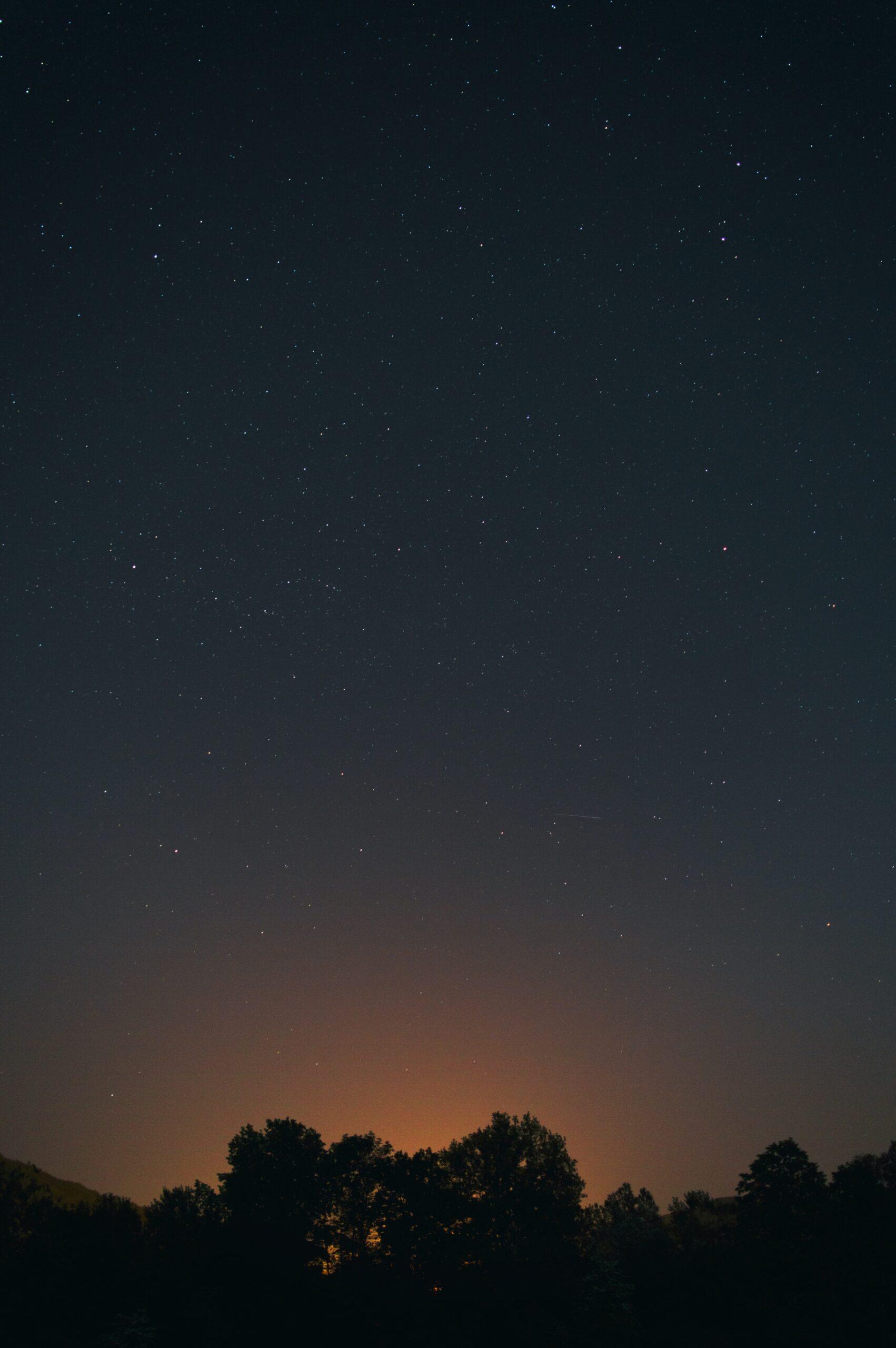 solera1905-amontillado-noche-misterio