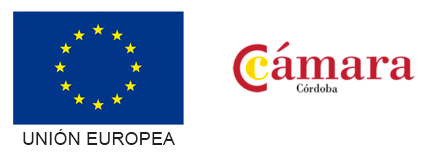 UE-CAMARA